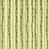 Иллюстрация акварели бамбука как повторенная безшовная картина на зеленой предпосылке Картина руки на бумаге иллюстрация штока
