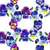 Иллюстрация акварели фиолетовых цветков картина безшовная Pansies акварели предпосылка красивой акварели Стоковое Фото
