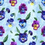 Иллюстрация акварели фиолетовых цветков картина безшовная Pansies акварели предпосылка красивой акварели Стоковые Фотографии RF
