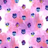 Иллюстрация акварели фиолетовых цветков картина безшовная Pansies акварели предпосылка красивой акварели Стоковая Фотография