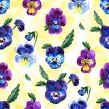 Иллюстрация акварели фиолетовых цветков картина безшовная Pansies акварели предпосылка красивой акварели Стоковые Фото