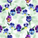 Иллюстрация акварели фиолетовых цветков картина безшовная Pansies акварели предпосылка красивой акварели Стоковые Изображения