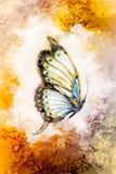 Иллюстрация бабочки и орнамента, смешанного средства абстрактный цвет предпосылки Стоковые Фото