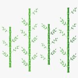 Иллюстрация бамбукового вектора плоская зеленый восточный китайский бамбук белизна предпосылки изолированная бамбуком иллюстрация вектора