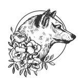 Иллюстрация вектора гравировки волка головная животная Стоковые Фото