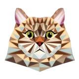 Иллюстрация вектора графиков полигона кота иллюстрация штока