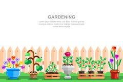 Иллюстрация вектора загородного дома садовничая Баки с осеменять овощи, клубнику и цветки около деревянной загородки иллюстрация штока