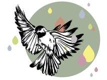 Иллюстрация вектора птицы нарисованной рукой стоковые изображения