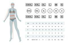 Иллюстрация вектора размеров женского тела иллюстрация штока