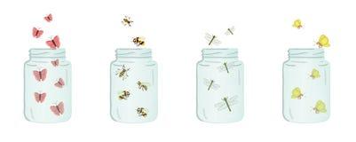 Иллюстрация вектора стеклянных опарников с насекомыми внутрь иллюстрация штока