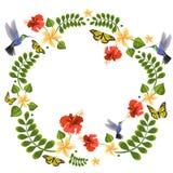 Иллюстрация вектора с колибри, бабочками, plumeria и гибискусом Флористические иллюстрации для приглашений, карт свадьбы иллюстрация вектора