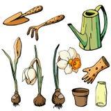 Иллюстрация вектора флористическая бесплатная иллюстрация