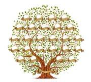 Иллюстрация вектора шаблона фамильного дерев дерева винтажная Стоковые Изображения