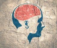 Иллюстрация головы женщины с мозгом Стоковая Фотография