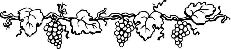 Иллюстрация границы виноградины бесплатная иллюстрация