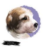 Иллюстрация искусства центрального азиатского портрета акварели щенка чабана цифровая иллюстрация вектора