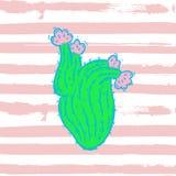 Иллюстрация кактуса вектора Стоковая Фотография RF