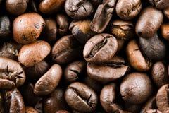 иллюстрация кофе фасолей предпосылки стоковое изображение