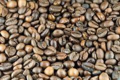 иллюстрация кофе фасолей предпосылки стоковая фотография rf