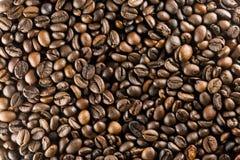 иллюстрация кофе фасолей предпосылки стоковые фотографии rf