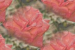 Иллюстрация красной розы с мягким заревом Стоковые Фото