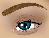 Иллюстрация крупного плана глаза Стоковые Фото