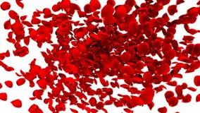 иллюстрация перевода 3D цветков красной розы летания иллюстрация штока