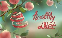 Иллюстрация показывает красное яблоко, которое было отрезано в спирали бесплатная иллюстрация