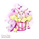 Иллюстрация праздников приветствию Свинья шаржа акварели в подарочной коробке с сердцами и confetti смешной сярприз белизна симво бесплатная иллюстрация