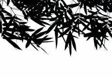 иллюстрация предпосылки bamboo выходит вектор Стоковое Изображение RF