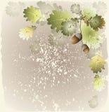 иллюстрация приветствию карточки жолудей бесплатная иллюстрация
