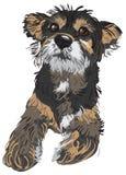 иллюстрация собаки Стоковое фото RF