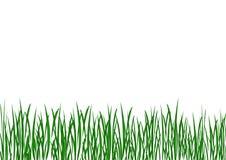 иллюстрация травы Стоковое Изображение RF