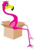 иллюстрация фламингоа Стоковое фото RF