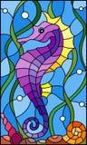 Иллюстрация цветного стекла с морским коньком рыб на предпосылке воды и водорослей Стоковое фото RF