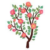 Иллюстрация чувствительной ветви весны Стоковые Фото