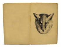 иллюстрация 1884 детей книги Стоковая Фотография