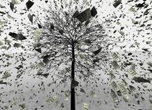 иллюстрация 3D предпосылки дождя USD/Dollar, usd скача от дерева иллюстрация вектора