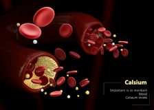 иллюстрация 3d calcitonin и parathormone Регулировка уровней кальция в крови Стоковое Фото