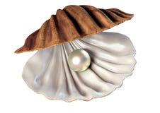 иллюстрация 3d seashell с жемчугом Иллюстрация штока