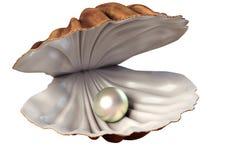 иллюстрация 3d seashell с жемчугом Бесплатная Иллюстрация
