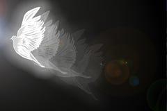 иллюстрация dove Стоковое Изображение RF