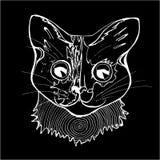 Иллюстрация psychodelic кота Черно-белый чертеж кота Мелок на классн классном иллюстрация штока