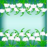 Иллюстрация snowdrops на темной предпосылке бирюзы Стоковое Фото