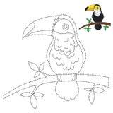 Иллюстрация toucan усаживания на ветви для малышей иллюстрация вектора