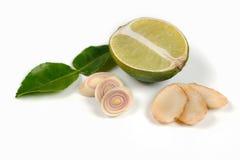 Имбирь, известка, kaffir выходит, изолированная трава лимона на белизну Стоковые Изображения