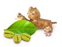 Имбирь корня и зеленые кофейные зерна Стоковое Фото