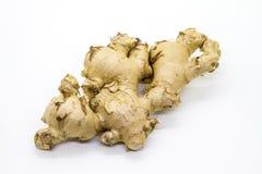 Имбирь, один из пряного вкусного ингридиента Стоковое фото RF