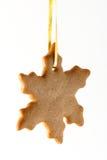 имбирь печенья Стоковая Фотография