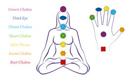 Имена символов руки ладони тела женщины Chakras иллюстрация вектора